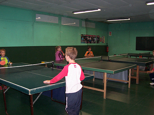 TENNIS-DE-TABLE-231